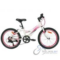 """Велосипед подростковый Nameless S2300W 20"""""""