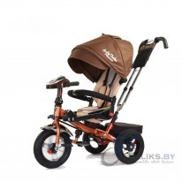Трехколесный велосипед Baby Trike Premium